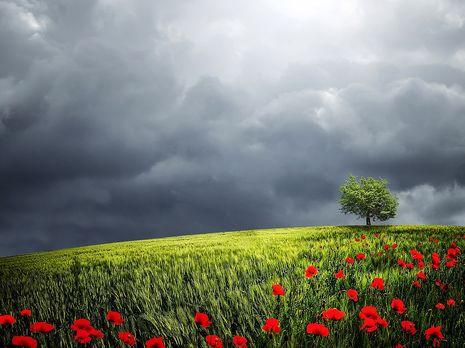 В Украине ожидается жаркая погода