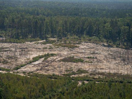 Зеленський заявляв, що масштаби незаконного видобування бурштину в Україні сягнули рівня екологічного лиха