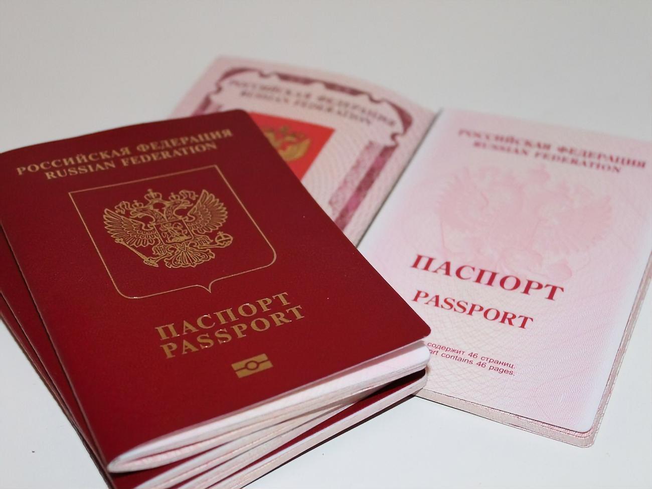 Паспорт быстрее через мфц или фмс