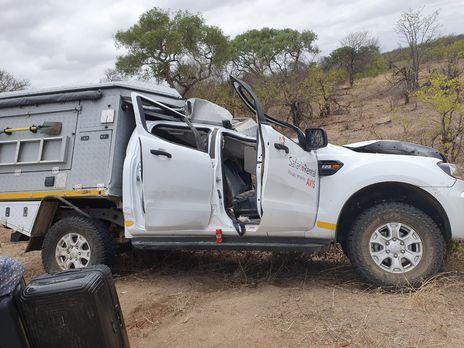 Сбитый жираф упал на другую машину, за рулем которой был турист из Швейцарии