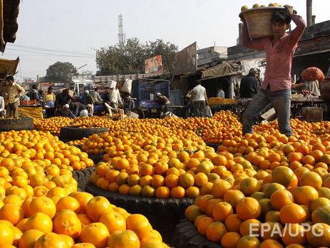 Ученые: Цитрусовые фрукты являются эффективным средством отожирения