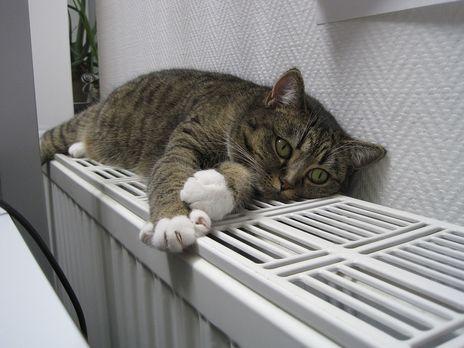 Тарифы на отопление могут снизить
