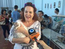 Второй фестиваль котиков: 43 животных обрели новых хозяев. Фоторепортаж