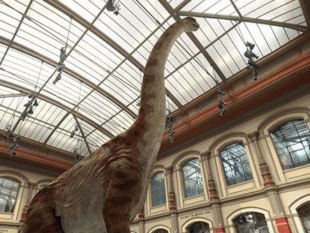Google «воскресил» динозавров при помощи виртуальной реальности