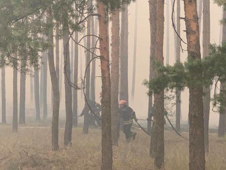 Лесной пожар начался днём 6 июля