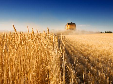 У Мінекономрозвитку заявили, що Україна може подвоїти експорт продовольства