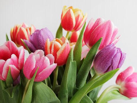8 марта отмечают Международный женский день