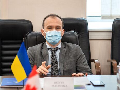 Малюська: Депутаты, в соответствии с Конституцией, не должны нести ответственность за результаты голосования