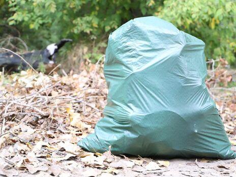 В Киеве в ходе экологической акции за день собрали 500 кубометров мусора