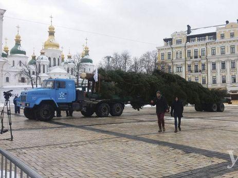 НаСофийскую площадь украинской столицы уже доставили главную елку государства Украины