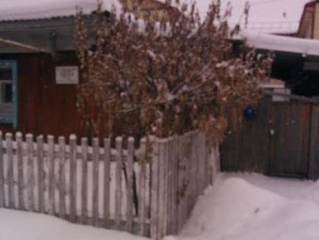 Тюменские чиновники спилили новогоднюю елку впалисаднике упенсионерки