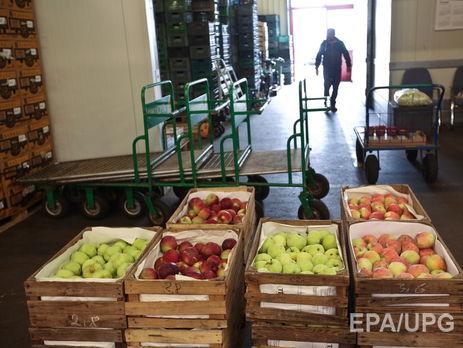 В Российской Федерации уничтожили девять тыс. тонн продуктов