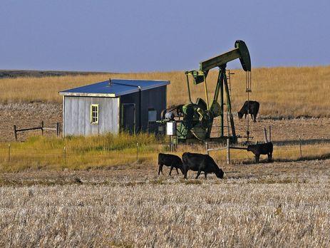 Цена барреля нефти Brent снизилась до55,45 доллара