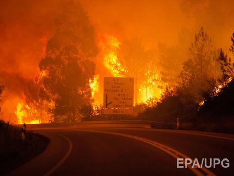 МЗС: Українців серед жертв лісових пожеж уПортугалії немає