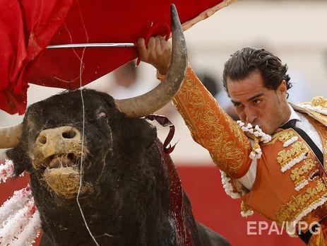 Матадор загинув від удару бика нафестивалі уФранції