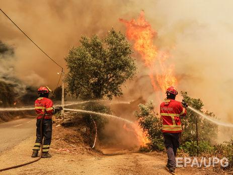 Названа вероятная причина масштабных пожаров вПортугалии