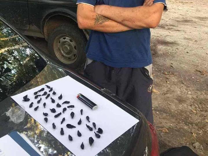 В Борисполе полиция задержала торговца наркотиками на территории школы
