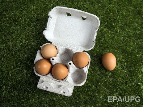 В Іспанії виявили 20 тис. заражених інсектицидом яєць