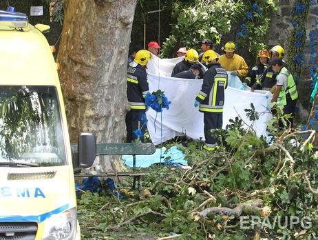 Внаслідок падіння дерева наМадейрі загинуло 11 людей
