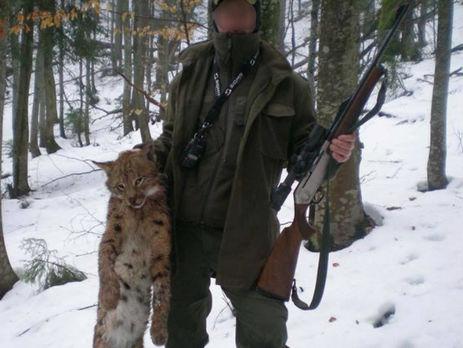 Лісничий у Закарпатті вбив червонокнижну рись, Держлісагентство почало службове розслідування