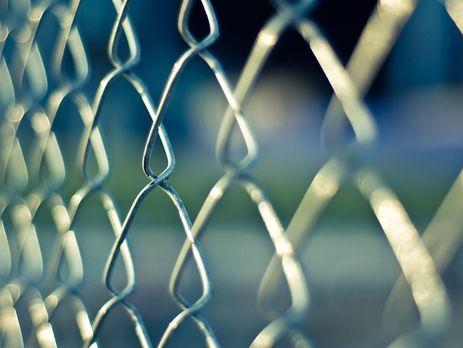 Польща увересні почне будівництво паркану проти кабанів накордоні зУкраїною