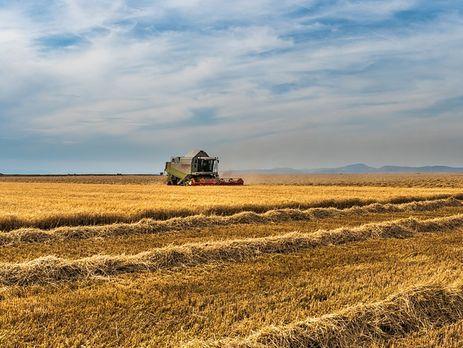 Ніколенко: За сім років оренди фермери зможуть викупити землю, але не зможуть продати, якщо не знімуть мораторію. Тобто все одно буде порушено право людини розпоряджатися приватною власністю