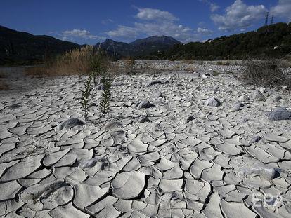 ВКрыму ввели режим чрезвычайной ситуации из-за засухи