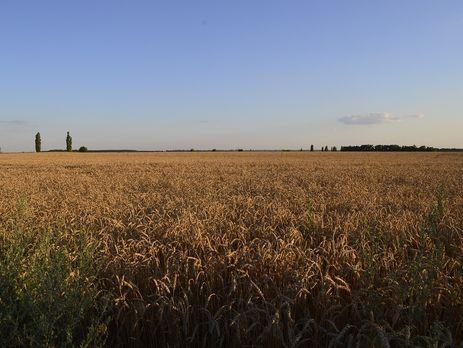 Більшість власників українських агрохолдингів не живе у своїй країні, зазначає автор