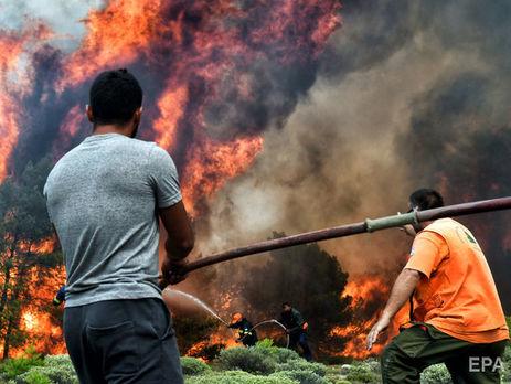 Масштабные лесные пожары в Греции начались 23 июля