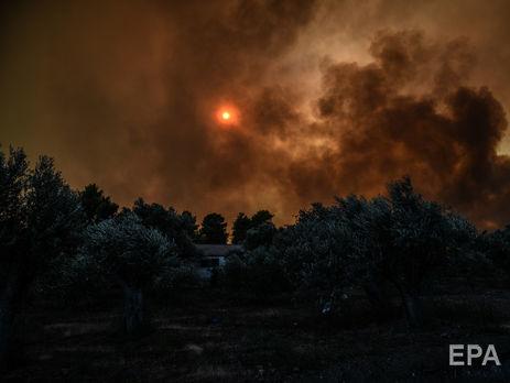Жертвами пожаров стали уже почти 100 человек
