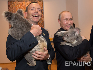 Путин, загнанный в угол, ведет себя хуже, чем коала