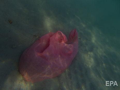 По данным Организации Объединенных Наций к 2050 году в Мировом океане пластика будет больше чем рыбы если человечество не откажется от тов