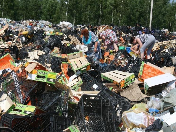 Картинки по запросу уничтожили санкционные продукты картинки