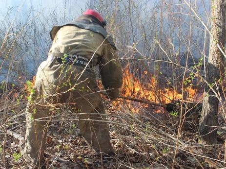 В Чернобыльской зоне пожарные продолжают ликвидировать очаги возгорания