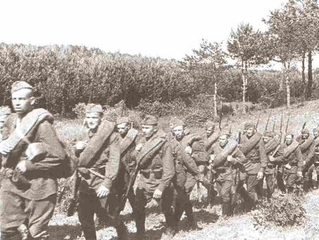 Киевлянка Хорошунова в дневнике 1941 года: Самое ужасное – это панический страх в армии / Гордон