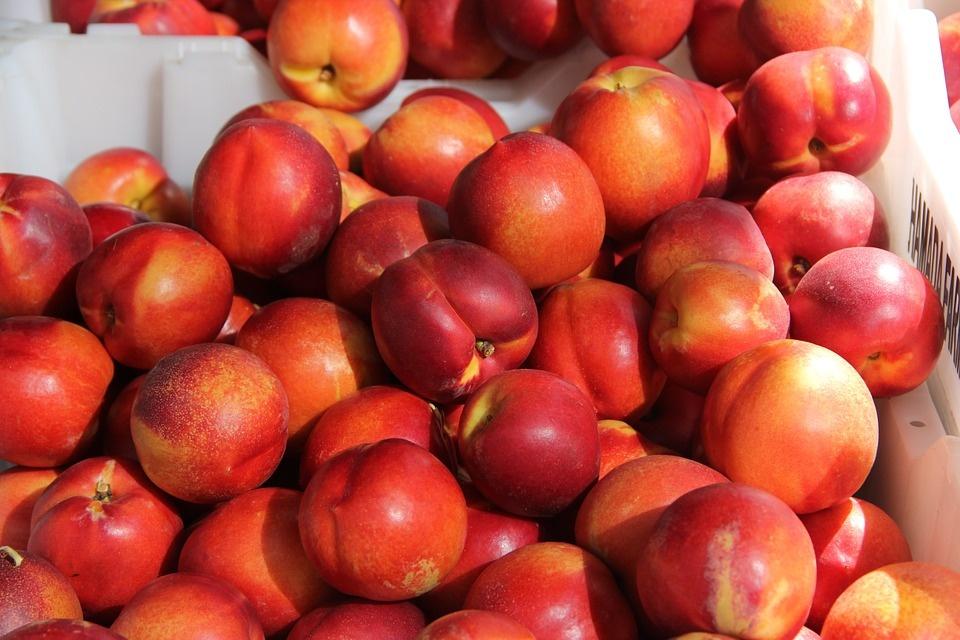 Персик или нектарин: что полезнее? / ГОРДОН