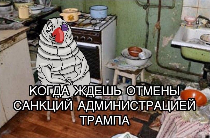 Ждем разъяснений позиции Пентагона о диалоге с Россией с позиции силы, - Шойгу - Цензор.НЕТ 7646
