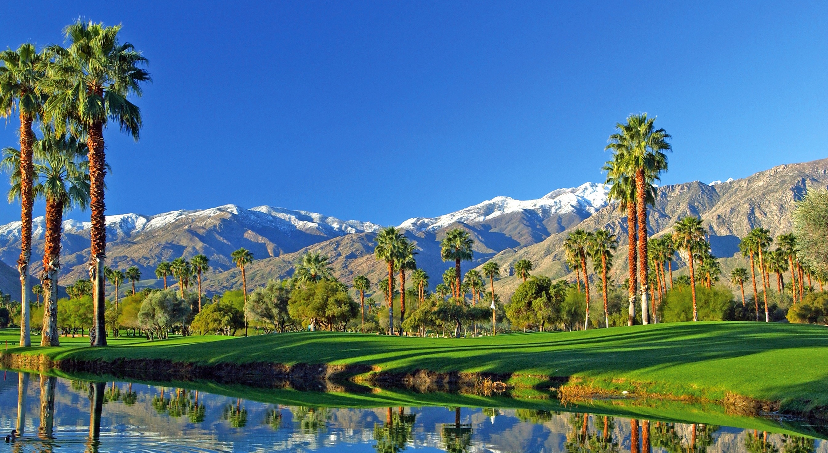 mesquite_golf_club_in_palm_springs_ca