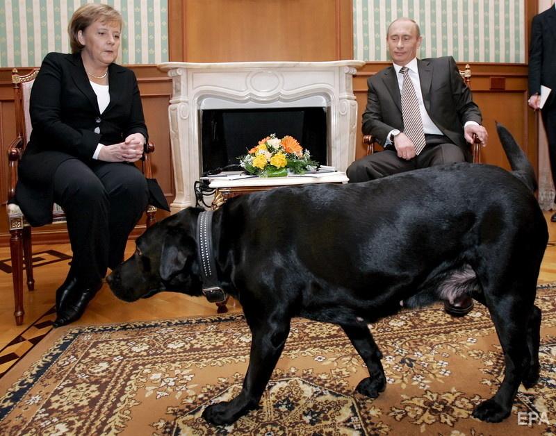 В январе 2007 года в Сочи собака Путина вошла в комнату, где её хозяин проводил встречу с канцлером Германии Ангелой Меркель. Белковский говорил, что Меркель недолюбливает собак. Фото: Sergei Chirikov / ЕРА
