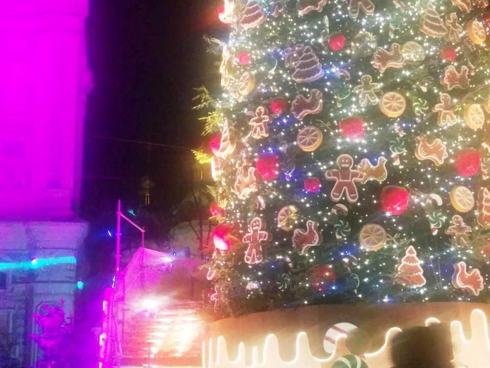 Главная елка страны на Софийской площади. Фото: Володимир Кухар / Facebook
