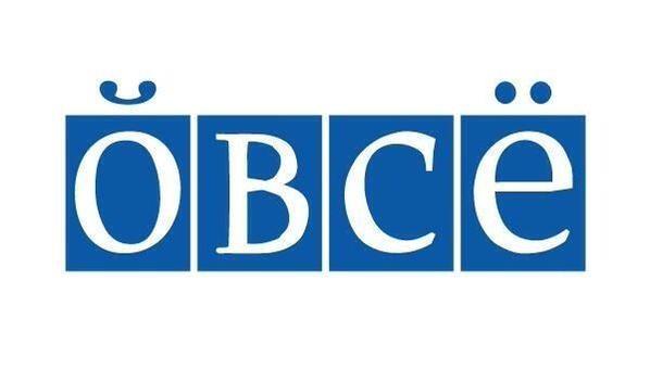 ОБСЕ присуждена премия за наблюдательную миссию на Донбассе - Цензор.НЕТ 2185